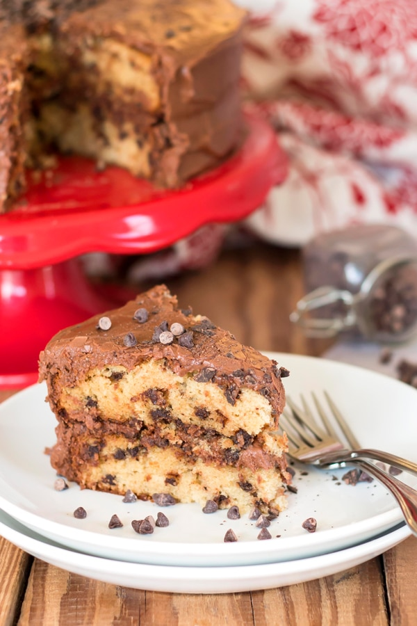 Mini Chocolate Chip Cake with Mocha Frosting