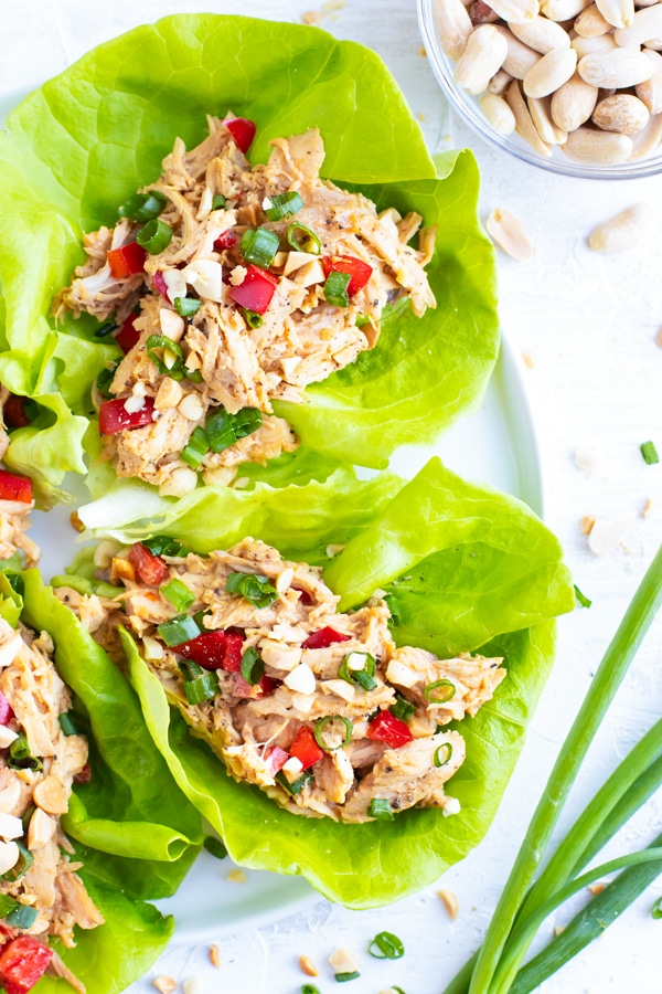 Asian lettuce wraps with a peanut butter sauce and shredded chicken filling on a white plate.