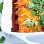 Cheesy Shredded Chicken Enchiladas | Easy, Authentic, Homemade Mexican Recipe