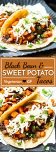 Black Bean & Sweet Potato Tacos   A gluten free and vegetarian taco full of refried black beans, sweet potatoes, cilantro and cheese! They make a great breakfast, lunch or dinner taco recipe.