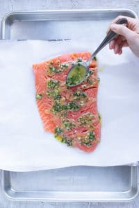 Lemon basil sauce being poured over salmon fillets on a baking sheet lined with foil and parchment paper.