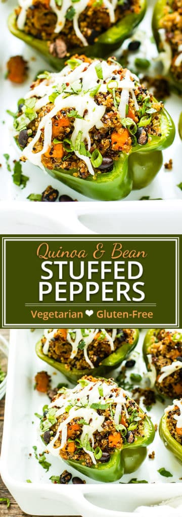 Black Bean & Quinoa Stuffed Bell Peppers are super filling and ultra nutritious.  They're dairy-free, vegan, vegetarian, gluten-free, soy-free and make a quick & easy dinner or lunch recipe!