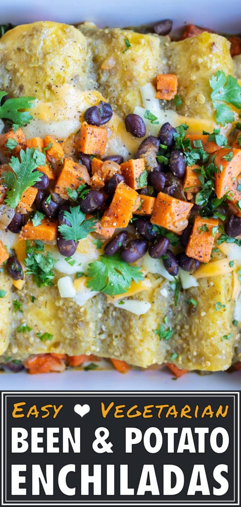 Close up photo of baked enchiladas topped with extra filling and fresh cilantro.