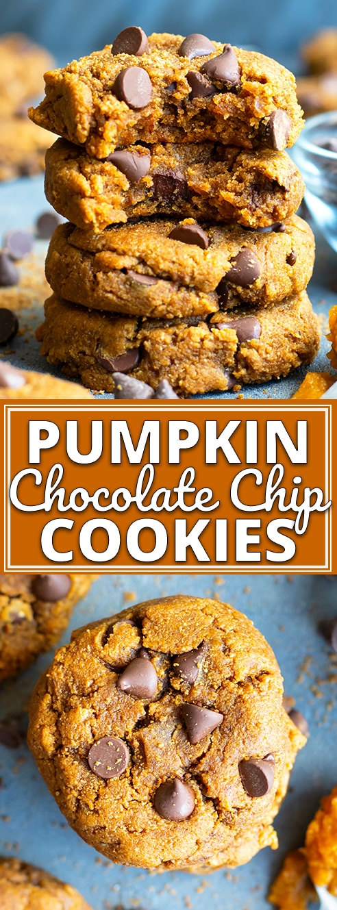 Pumpkin Chocolate Chip Cookies are melt-in-your mouth soft, so easy to whip up, and made healthy by using gluten-free flours, dairy-free and vegan coconut oil, and Paleo chocolate chips!