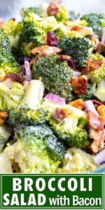Broccoli bacon salad with a creamy mayo and yogurt dressing with walnuts and cranberries.