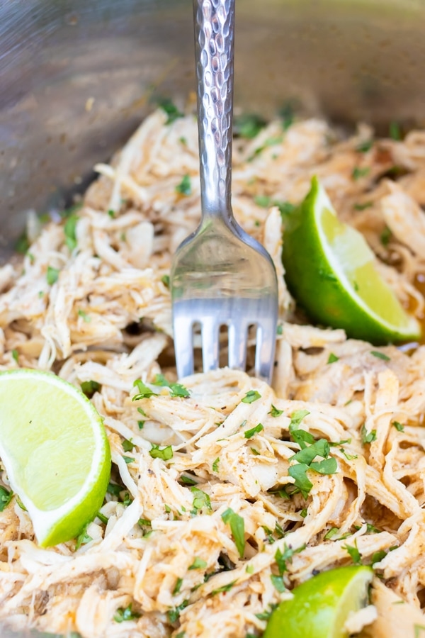 A fork scooping out shredded salsa verde chicken with sprinkles of cilantro.