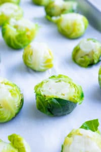 A smashed Brussels sprout on a baking sheet.