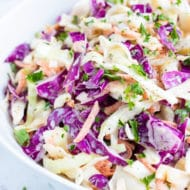 The best Southern Coleslaw recipe that is made with vegan mayo, Paleo mustard, and a little bit of sugar.