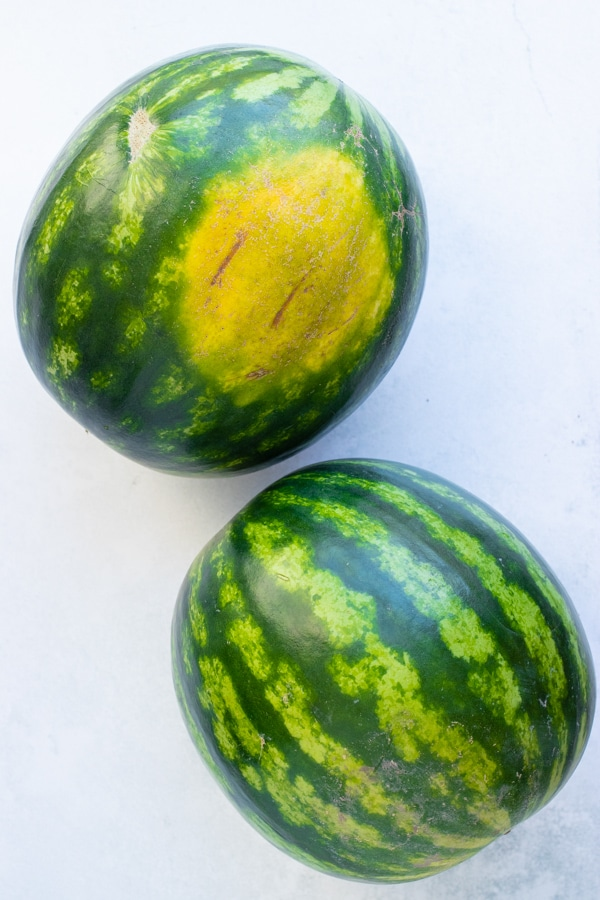 Two watermelons showing a bright yellow ground spot.