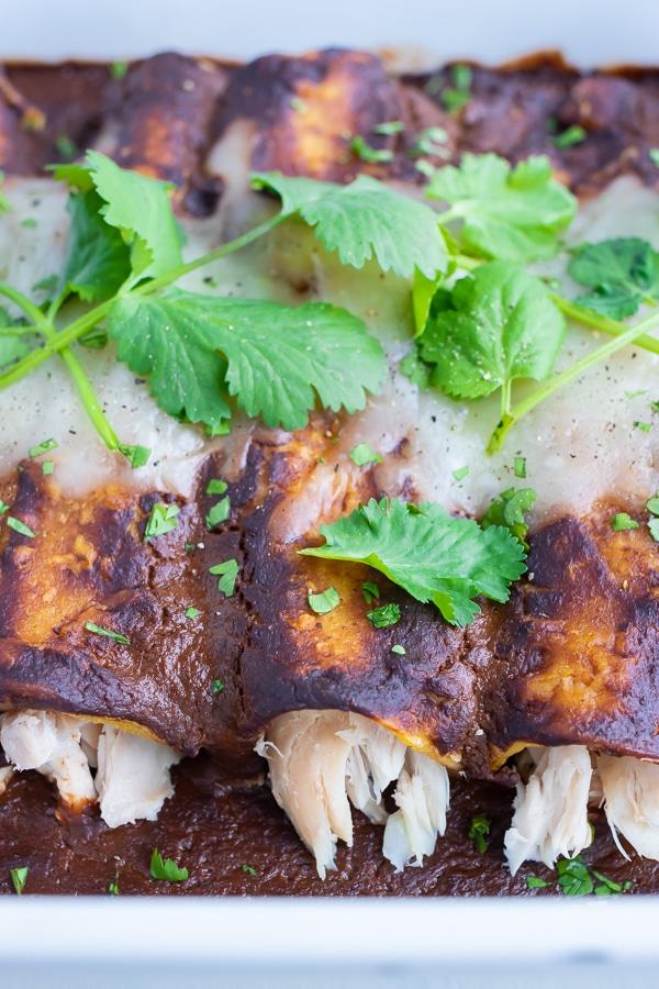 Fresh cilantro is spread across the topped of crispy, mole enchiladas.