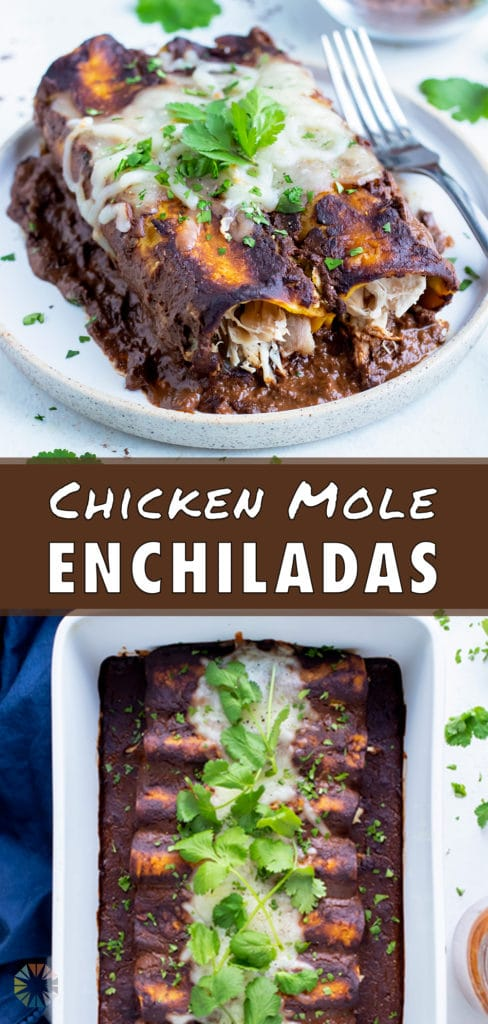 A pan of chicken enchiladas is served on the counter.