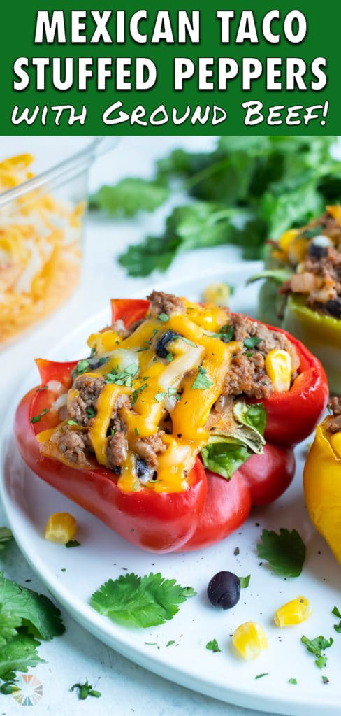 A plate is used to serve taco stuffed bell peppers.